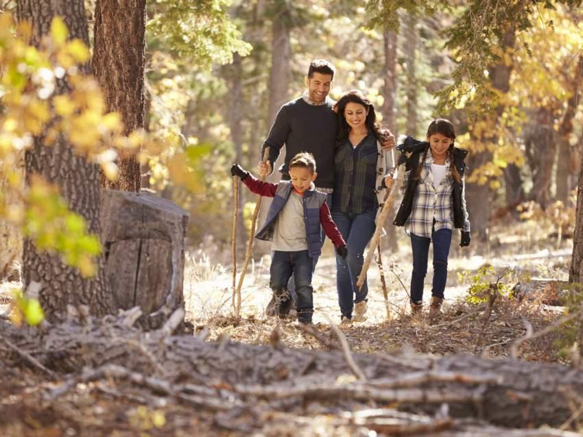 Ballade en famille en forêt