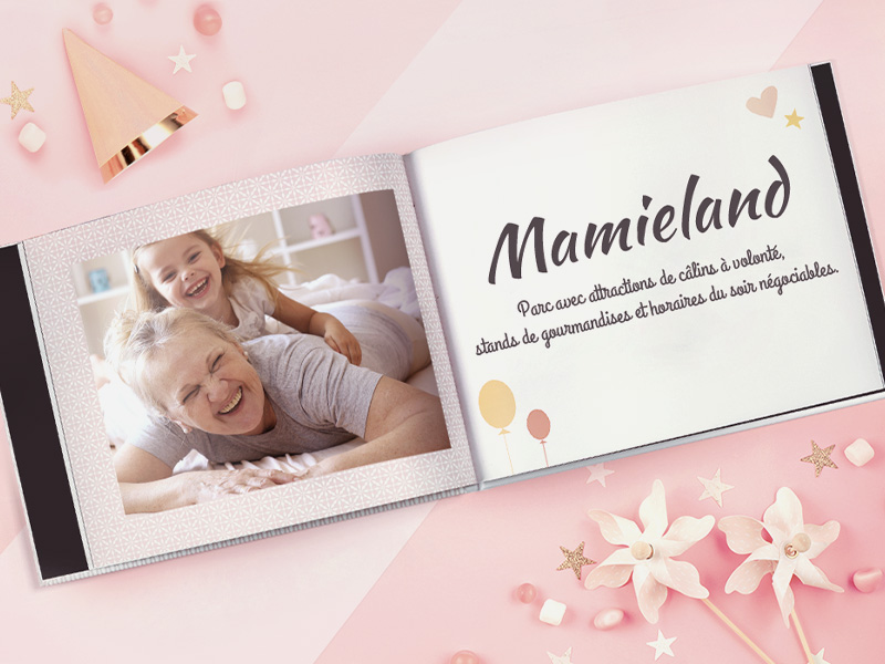 livre photo mamieland